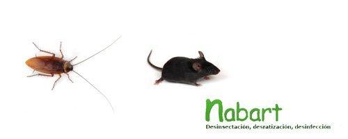 Nabart
