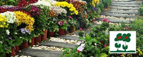 Jardinería Martínez